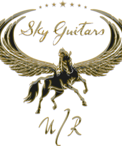 SKY GUITAR ACCESSORIES